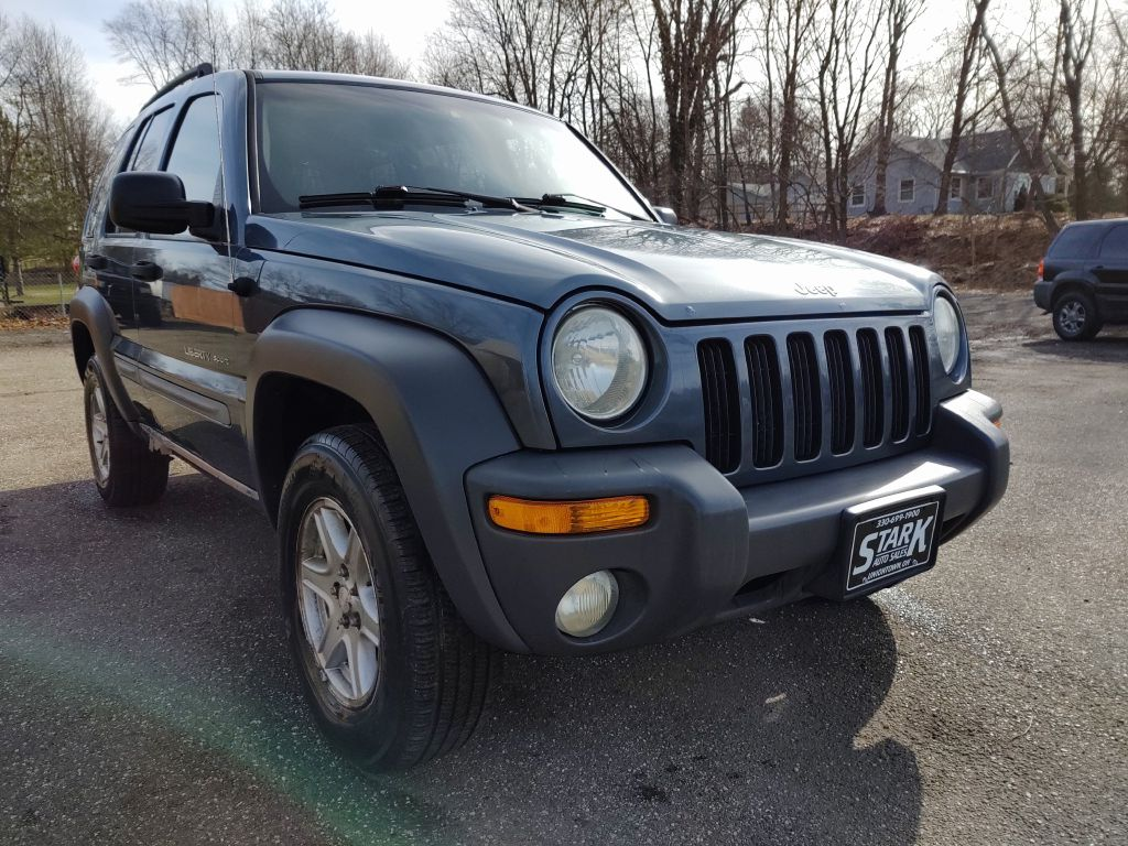 2002 JEEP LIBERTY SPORT for sale at Stark Auto Sales