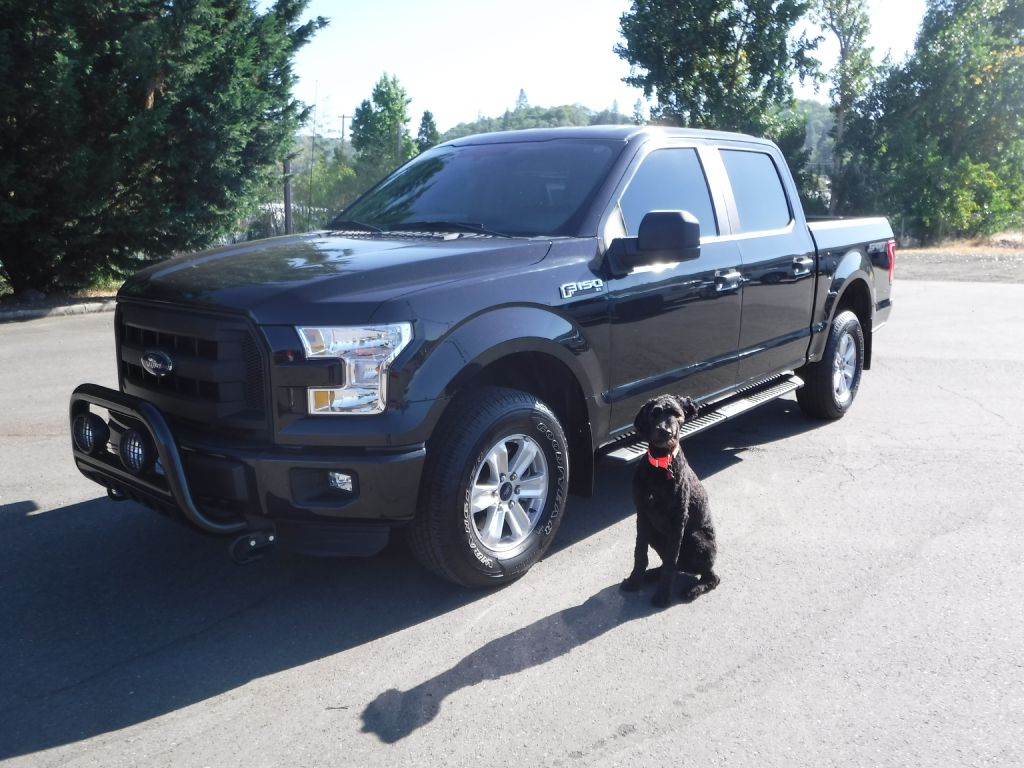 2015 FORD F150 1FTEW1EF6FFA89277 WINCHESTER WHOLESALE INC.